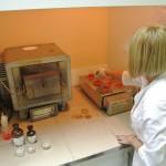 исследования в экоаналитической лаборатории